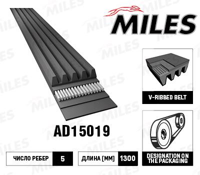 MILES, ремень поликлиновой, 5PK1300/AD15019, Китай